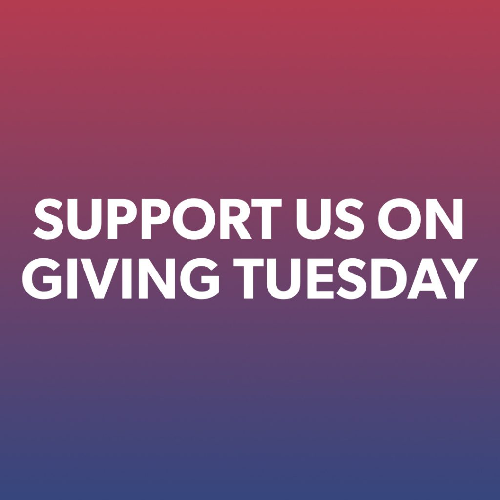 Support us on Giving Tuesday instagram story